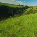 uMgeni Valley Nature Reserve. Image source: