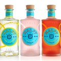 Pernod Ricard acquires super-premium Malfy Gin