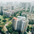 Circular cities of the world: What can green infrastructure do?