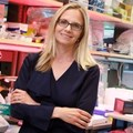 Christina Curtis and her colleagues found that colon cancer tumours could potentially spread to other parts of the body much earlier than previously known.