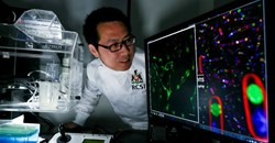 Dr Dan Wu, postdoctoral fellow in the RCSI Department of Chemistry and first author on the paper