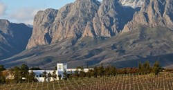 Vergelegen named best winery on the African continent
