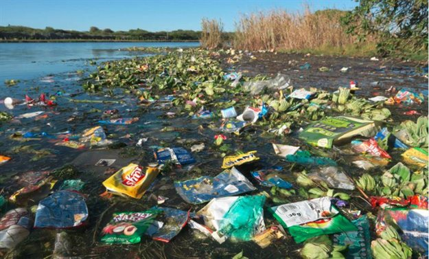 A coastal wetland overrun by plastic. Supplied by author