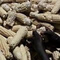 Understanding the political economy of maize in Kenya