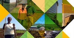 Advisory panel releases final land reform report