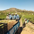 National conference to focus on farmworker struggles