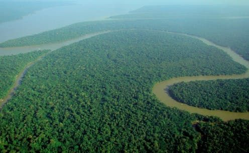 Undeveloped regions such as the Amazon rainforest are critical resources for slowing climate change. ,