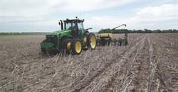 Restoring soil can help address climate change