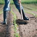 Transforming SA agriculture through Change