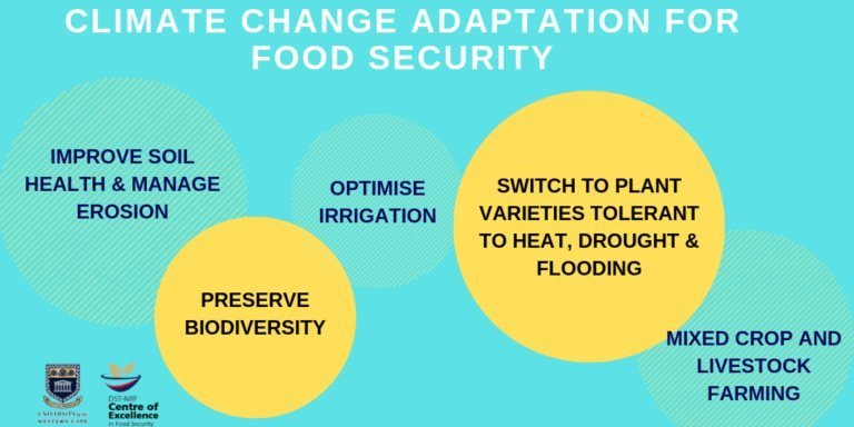 Adaptation is key to achieving SDG Goal 2 to End hunger, achieve food & nutrition security, promote sustainable agriculture