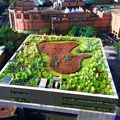 Green roofs, like this one in Sao Paulo, Brazil, have many benefits. Leonardo Ikeda/Shutterstock