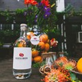 Truman & Orange to manage sales and distribution of Bloedlemoen Gin