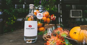 Truman & Orange to manage sales and distribution of Bloedlemoen Gin