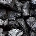 Youth in Mining opposes coal deal