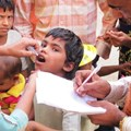 The oral polio vaccine is most commonly used in the developing world, despite one big problem. CDC/Alan Janssen, MSPH, CC BY