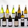 FNB Sauvignon Blanc Top 10 announces its top 20 finalists