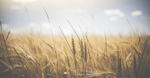 Ekurhuleni empowers farmers in drive to grow economy