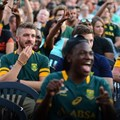 Image credit: Springbok Supporters' Club
