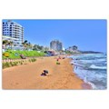 How to explore Durban's Florida Road like a local