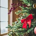 Budget tips for the festive season