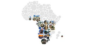 Ornico increases media and brand intelligence footprint across Africa
