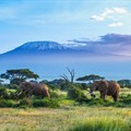 Tanzania, a leader in Africa's business tourism events