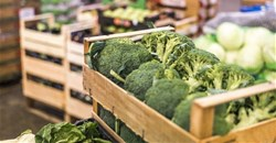 Blockchain, driven by IoT, can save food industry $31bn by 2024