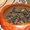 Why we're involved in a project in Africa to promote edible insects