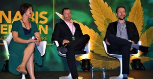 SA cannabis industry in urgent need of inclusive legislation