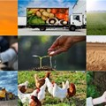 #BestofBiz 2019: Agriculture