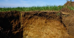 Soil is our best ally in the fight against climate change - but we're fast running out of it