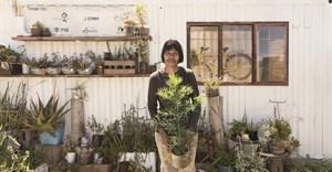 SA wine farm wins international Drinks Business Green Award