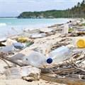 How beach pollution harms marine life