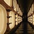 Naruse Inokuma Architects reinvents capsule hotel experience