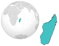 Madagascar, the world's fourth-largest island, is a global biodiversity hotspot. Andrea Baden