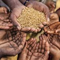WFP forecasts global hunger hotspots in 2020