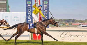 Vardy with jockey Craig Zackey wins 2020 L'Ormarins Queen's Plate