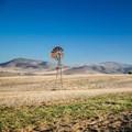 Land Bank implosion and Moody's downgrade sparks setback for SA agriculture, says Agri SA