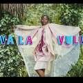 Image source: Viva La Vulva ad on .