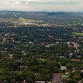Trees in South Africa are under attack. Why it's proving hard to manage