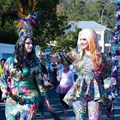 Knysna to host 2020 Pink Loerie Mardi Gras and Arts Fest