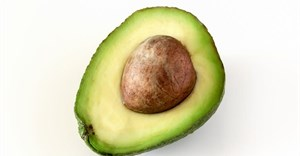 Avocados in Kenya: What's holding back smallholder farmers