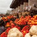 Nigeria needs to close the financial inclusion gap for women smallholder farmers