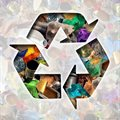 Celebrate the 'seventh resource' this Global Recycling Day