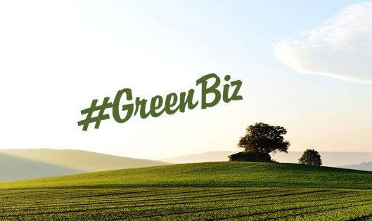 Green Outcomes Fund launched to grow green SMMEs