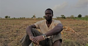 Why Ghana's smallholders aren't excited by the latest 'Green Revolution'