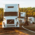 A truck driver's story to life under lockdown