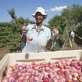 UIF reaches out to domestic workers, farm labourers