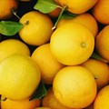 Overview of global lemon market