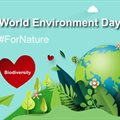 Sappi acts #ForNature and celebrates World Environment Day 2020